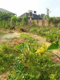 Commercial Land Land for sale Port-harcourt/Aba Expressway Port Harcourt Rivers