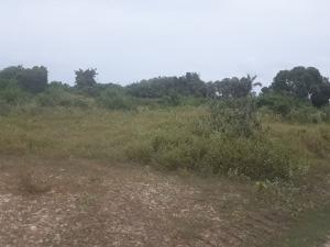 Mixed   Use Land Land for sale IGANDO OLOJA, IBEJU LEKKI Eleko Ibeju-Lekki Lagos