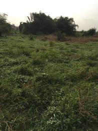Mixed   Use Land for sale Onikanga Village Eruwa Road/across Ibadan Eleyele Ibadan Oyo