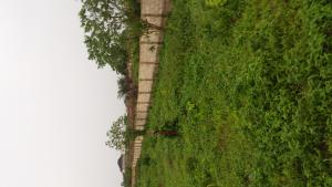 Commercial Land Land for rent 300 by 350 (61/2) land fenced round. Akpabo street, off Nneka Street, off Ugbor, GRA close to choice gate hotel available for sale for 25 million naira asking. Oredo Edo