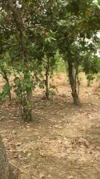 Residential Land Land for sale Nasarawa-Eggon Nassarawa