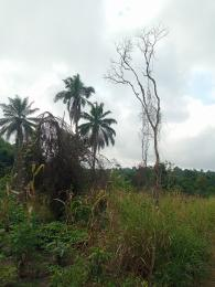 Mixed   Use Land Land for sale Ikire close to osun state university Isokan Osun