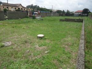 Residential Land Land for sale Off Admiralty Way Lekki Phase 1 Lekki Lagos