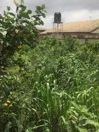 Mixed   Use Land Land for sale  college road. Ogba Bus-stop Ogba Lagos