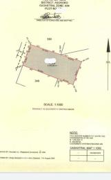 Residential Land Land for sale  Asokoro Main Asokoro Abuja