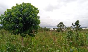 Mixed   Use Land for sale Giri (giri Layout) Gwagwalada Abuja