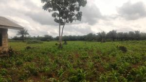 Mixed   Use Land Land for sale Atan Ado Odo/Ota Ogun