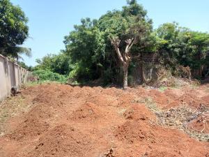Mixed   Use Land Land for sale opposite Ofu Obi African Centre, independence layout Enugu Enugu