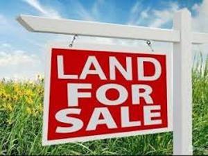 Residential Land Land for sale Atlantic View Estate, Along Alpha Beach Road chevron Lekki Lagos