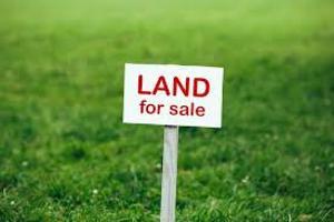 Industrial Land Land for sale Asese Bus stop, Lagos-Ibadan Express way Obafemi Owode Ogun