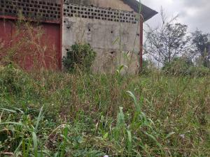 Industrial Land for sale Onitsha Road Industrial Layout Owerri Imo