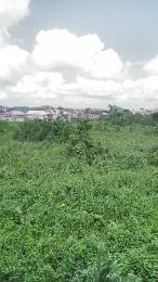 Land for sale Rumuodomaya,along The East/west Road Obia-Akpor Port Harcourt Rivers