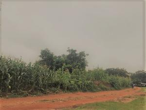 Residential Land Land for sale Apo resettlement Apo Abuja