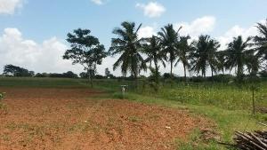 Land for sale Jesu Oyingbo, Close To Shonibare Estate Gate Shonibare Estate Maryland Lagos