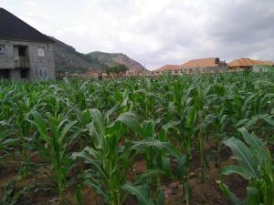 Mixed   Use Land Land for sale Arab road Kubwa Abuja