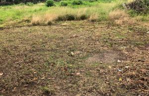 Mixed   Use Land Land for sale Oduduwa crescent Ikeja GRA Ikeja Lagos