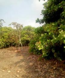 Commercial Land Land for sale  Ogbomosho Oyo