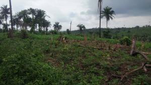 Land for sale Oke Mekun Elebu Oluyole Estate Ibadan Oyo