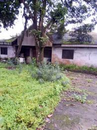 4 bedroom Detached Bungalow House for sale Eagle Island Eagle Island rumueme/Oroakwo Port Harcourt Rivers