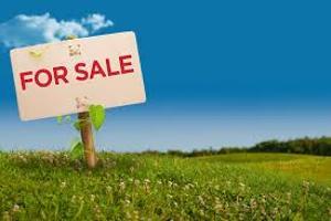 Residential Land Land for sale Silver Point Estate Sangotedo Ajah Lagos