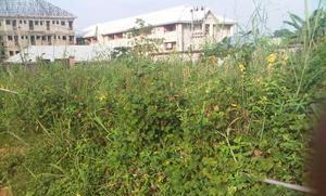 Land for sale Igbariam campus Dunukofia Anambra