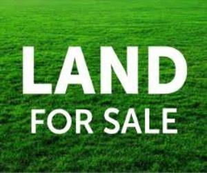 Commercial Land Land for sale Ago palace Okota Lagos