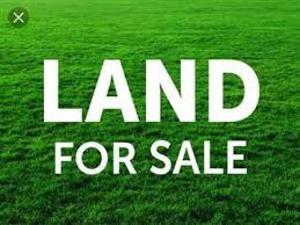 Commercial Land Land for sale Okota Road Ago palace Okota Lagos