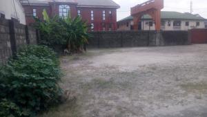 Mixed   Use Land Land for sale Amadi Ama Opposite CPM Church, Trans Amadi  Trans Amadi Port Harcourt Rivers