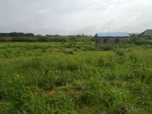 Industrial Land Land for sale Pan African University Eleko Ibeju-Lekki Lagos