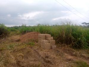 Residential Land Land for sale Lane 5, Aba Ayo Area Near Oke Mekun Elebu Extension, Oluyole Extension Off Akala Express Akala Express Ibadan Oyo