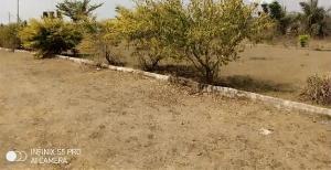Mixed   Use Land Land for sale akoda ede Ede South Osun