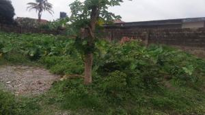 Land for sale Ajadi Ologuneru Eleyele Ibadan Oyo