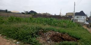 Residential Land Land for sale Palace bus stop area, Akala Akobo Akobo Ibadan Oyo