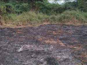 Mixed   Use Land Land for sale odeda Abeokuta Ogun