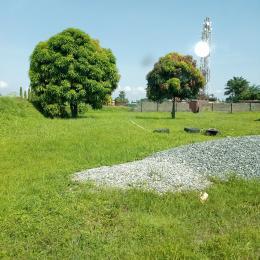 Residential Land Land for sale Lekki Expressway Eden garden Estate Ajah Lagos