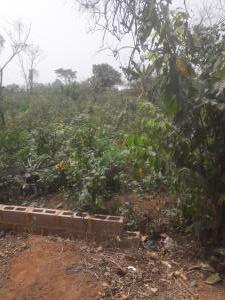 Land for sale Glover Road Old Ikoyi Lagos Old Ikoyi Ikoyi Lagos