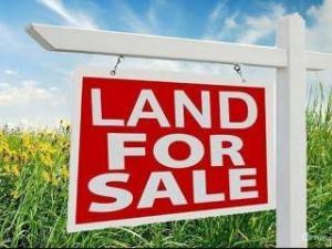 Commercial Land Land for sale Road Oba Akran Ikeja Lagos