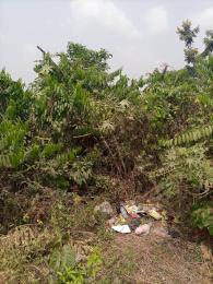 Land for sale Lagos Ibadan Express Way Iwo Rd Ibadan Oyo