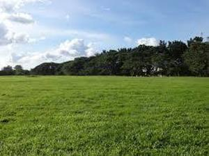 Commercial Land Land for sale Agbara Industrial Estate, Agbara , Ogun State, Nigeria Agbara Agbara-Igbesa Ogun