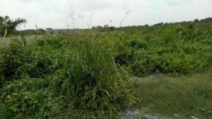 Mixed   Use Land for sale Bogije Bogije Sangotedo Lagos