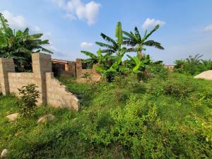 Mixed   Use Land Land for sale Evbuoriaria, Off Sapele Road, Benin City  Oredo Edo