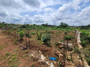 Mixed   Use Land Land for sale Okhuoromi, Off Irhirhi Road, Off Airport Road, Benin City  Oredo Edo