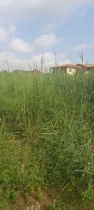 Residential Land for sale Ire Akari Estate, Oluyole Extension Akala Express Ibadan Oyo