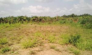 Joint   Venture Land Land for sale Cooper Road Old Ikoyi Ikoyi Lagos