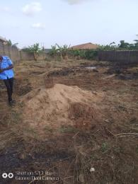 10 bedroom Mixed   Use Land Land for sale Ifo - ILARO express way Ifo Ifo Ogun