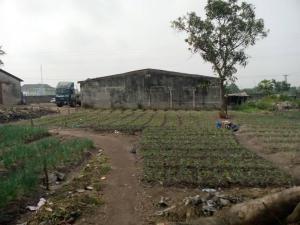 Land for sale Ojo Local Government Badagry Badagry Badagry Lagos