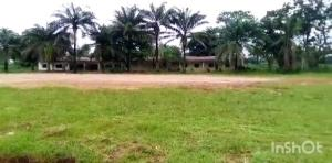 Mixed   Use Land Land for sale IDORO ROAD Uyo Akwa Ibom