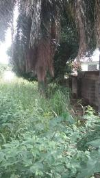 Land for sale Opic Estate Immediately after Lagos state Arepo Arepo Ogun