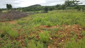 Mixed   Use Land Land for sale Ilorin Kwara