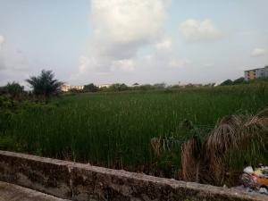 Residential Land Land for sale Alewa road, ILASAN ELEGUSHI LEKKI Ilasan Lekki Lagos